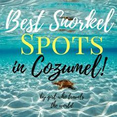 Cozumel Scuba Diving, Cozumel Beach, Best Snorkeling, Cozumel Mexico, Caribbean Culture, Maui Vacation, Big Island Hawaii, Island Tour, Mexico Travel