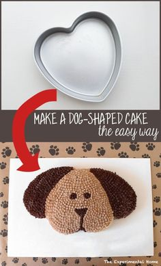 How To Make A Birthday Cake For A Dog Lovefoodibiza Couscous Carrot Birthday Cake For Dogs Lovefoodibiza. How To Make A Birthday Cake For A Dog Dalmatian Diy Recipe Tasty Turkey Meatloaf Dog Birthday Cake. How To Make A Birthday Cake For A Dog Make. Puppy Birthday Parties, Puppy Party, Dog Birthday, Cake Birthday, Birthday Ideas, Birthday Pictures, 16th Birthday, Birthday Wishes, Cake Cookies