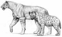 Homotherium (extinct sabertooth) and Crocuta (spotted hyena) by Mauricio Anton