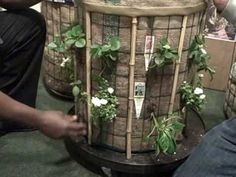 Grow 20 Square Feet of Vegetables in 4 Sq Ft of Space with the Phytopod ...