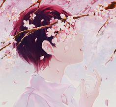 Kết quả hình ảnh cho hoa anh đào anime