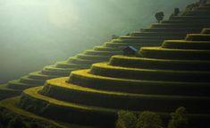 Rice fields Mu Cang Chai, Vietnam by Sasin Tipchai on 500px