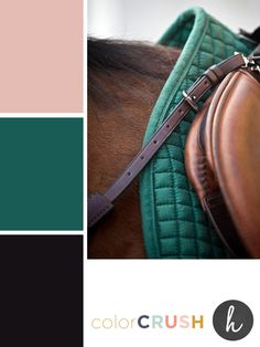 Shell + Hunter Green | Inspired by Heather