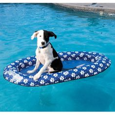 Overton's : Paddle Paws Pet Float For Dogs Over 65 lbs. - Watersports > Lake & Pool Leisure > Floats & Lounges : Swimming Pool Lounges, Pool Floats, Pool Chairs, Rafts