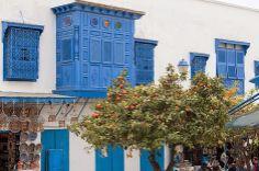 Sidi Bou Said ou Sidi Bousaid é uma vila e município da costa nordeste da Tunísia, situada aproximadamente 20 km a nordeste do centro de Tunes.   É uma vila muito pitoresca, tanto pelas suas casas brancas e azuis tradicionais, como pela paisagem em que se insere, ocupando uma falésia sobre o mar Mediterrâneo, que domina o golfo de Tunes e a zona de Cartago.