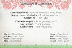Mini language lesson Hungarian greetings and slang Language Study, Language Lessons, Hungary, Writer, Thankful, Languages, English, Learning, School