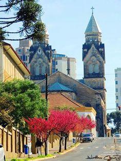 Catedral Diocesana  /  Rua  Frei Gabriel