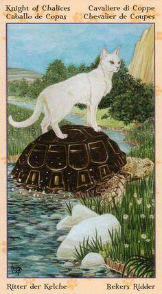 Le cavalier de coupes - Tarot de chats païens