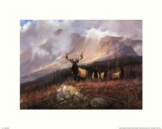 Elk...not my choice of animal BUT  it is one of the creatures we DONT have a painting/poster of yet...