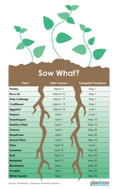 Use this chart to plan when to start seeds indoors and when to transplant seedlings. What are you growing this year?