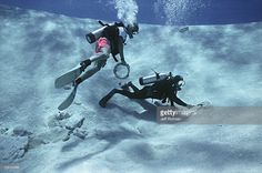 Divers retrieving treasure from blown hit during the recovery of the shipwreck 'Las Maravillas' sunk in 1658 - Bahamas.