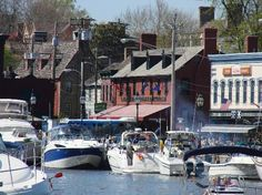 Photo of 'Ego Alley'. One of the best vacations ever, overlooking Ego Alley. Chesapeake Bay, across the water from Annapolis Navel Academy, etc. Ego Alley is where status-seekers 'park' their watercraft to stop at Pusser's - for crab, naturally.
