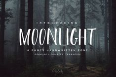 Moonlight Brush Font  by Chocotype on @creativemarket