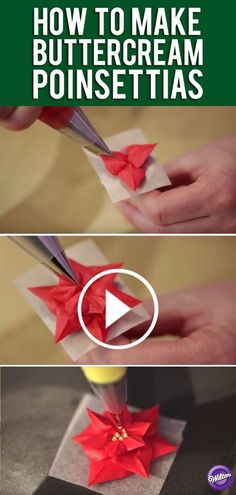 Buttercream Flower Series: How to Make Poinsettias For this lesson in buttercream flowers you will learn how to make the beautiful poinsettia, which is prefect for the holiday. (how to make frosting flowers) Frosting Techniques, Frosting Tips, Frosting Recipes, Buttercream Flowers Tutorial, Buttercream Designs, Buttercream Decorating, Cake Decorating Techniques, Cake Decorating Tutorials, Cookie Decorating