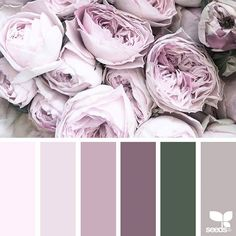 Flora palette цвета design seeds, farver и soveværelse Color Palette For Home, Colour Pallette, Colour Schemes, Color Patterns, Color Combos, Design Seeds, Ecommerce Webdesign, Color Concept, Corporate Identity Design