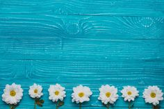 Backdrops for the subject shooting wooden, flowers - s Laptop Wallpaper, Wallpaper Pc, Flower Wallpaper, Wallpaper Backgrounds, Background Powerpoint, Blue Aesthetic, Aesthetic Wallpapers, Textured Background, Backdrops