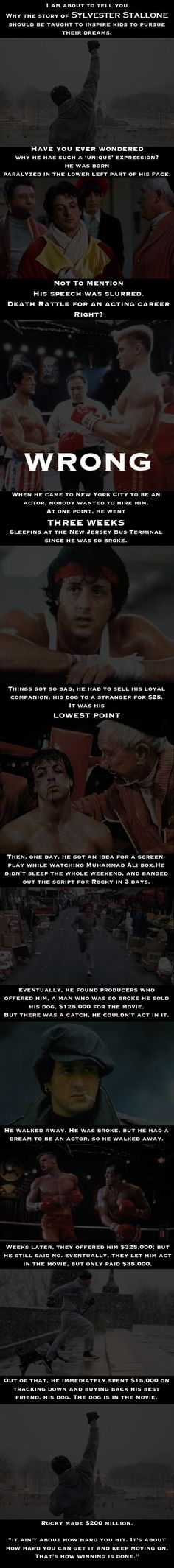 What an amazing story about Sylvester Stallone. I never heard about this before. What an amazing story about Sylvester Stallone. I never heard about this before. Don't Give Up, Never Give Up, Move On, Stallone Rocky, Motivational Quotes, Inspirational Quotes, Funny Quotes, Movie Quotes, Uplifting Quotes