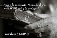 Proverbios 4:6