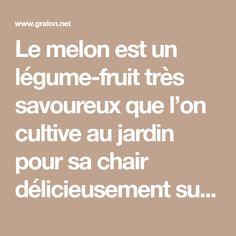 Le melon est un légume-fruit très savoureux que l'on cultive au jardin pour sa chair délicieusement sucrée et parfumée. Voici quelques conseils pratiques pour planter des melons dans un coin bien ensoleillé de votre jardin., par Audrey