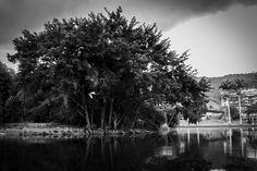 UnParSinRumbo Un lago lleno de cachamas, tortugas y aves