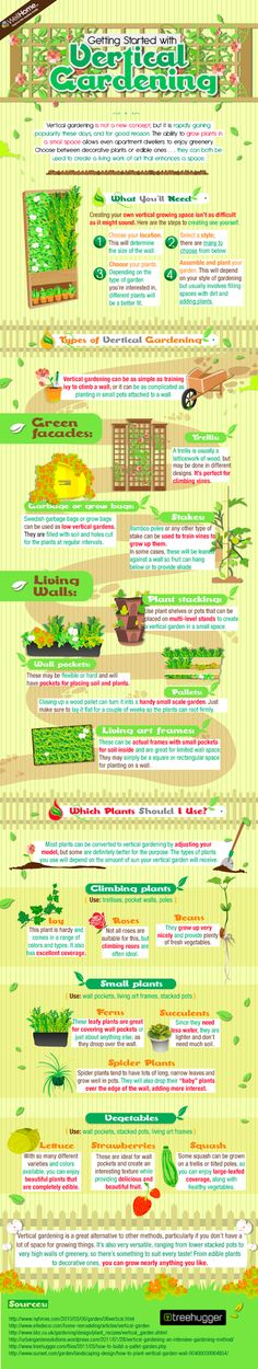 Getting Started with Vertical Gardening!     Whatever you want to call them, vertical gardens, living walls or green facades they are wonderful inventions that shade buildings, produce oxygen, provide habitat and just look lovely. Wellhome produced a great infographic explaining what they are and how they work.