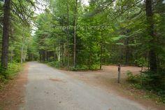 Arrowhead Provincial Park Ontario Canada Ontario Parks, Sidewalk, Country Roads, Canada, Summer, Summer Recipes, Walkways, Summer Time, Pavement