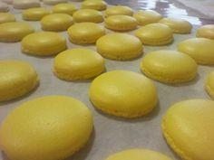 Macarons G.N