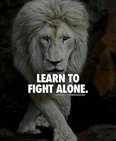 Then you gain the wisdom to fight for what is right and who to surround yourself with. You can fight alone, but with the right ones you don't got to. Words Quotes, Wise Words, Me Quotes, Motivational Quotes, Inspirational Quotes, Lion Quotes, Sad Sayings, Qoutes, Great Quotes