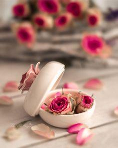 Good Morning Beautiful Flowers, Beautiful Flowers Images, Beautiful Bouquet Of Flowers, Beautiful Photos Of Nature, Flower Images, Beautiful Roses, Fb Wallpaper, Wallpaper Backgrounds, Butterfly Background