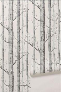 17 Best ideas about Birch Tree Wallpaper on Pinterest | Tree