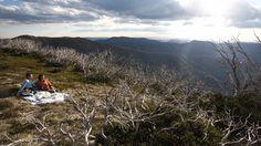 Mount Hotham, High Country, Victoria, Australia