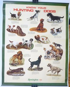 Remington vintage poster hunting dogs
