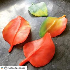 Beautiful autumn leaves made from modeling beeswax! Photo by Waldorf teacher Per…