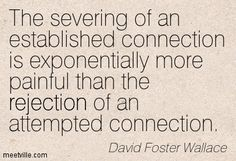 """""""The severing of an established connection is exponentially more painful than the rejection of an attempted connection."""" —David Foster Wallace"""