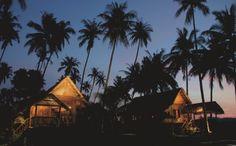 Temple Tree, Langkawi
