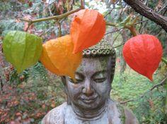 Buddha amongst the lanterns
