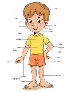 Montessori Kindergarten, Kindergarten Worksheets, Preschool Activities, Serbian Language, Butterfly Clip Art, Teaching Spanish, Printable Worksheets, Diy For Kids, Elementary Schools