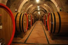 wine cellar in Montepulciano, Italy (by John Ediger)