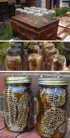 10 Awesome DIY Backyard Beehive Plans And Ideas Have you always wanted to become a beekeeper but didn't know where to keep them? Keeping bees is a good, Mason Jar Projects, Mason Jar Crafts, Mason Jar Diy, Mason Jar Garden, Old Wine Bottles, Wine Bottle Crafts, Diy Home Decor Projects, Diy Projects To Try, Garden Projects
