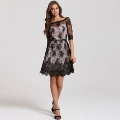 Little Mistress Black border lace bardot dress- | Debenhams