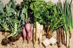 能登の野菜写真