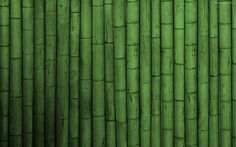 bambu-verde-4670.jpg (1920×1200)