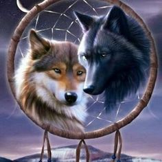 Two Wolves: Hope And A Prayer. Good Times. Between Twin Wolves. United By Bonding. Each Holds A Dark/Light Side Inside. One Good/Bad One Too. All Things Concidered. Nothing Good Becomes Bad. And...