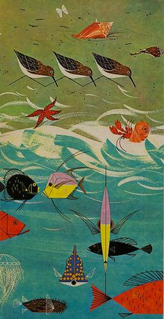 Beach Birds, a bology book illustration by Charley Harper, 1960s