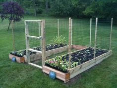 Square foot garden with hinged doors made of chicken wire.
