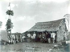 Suasana pembukaan perkebunan Bedagai di Tebingtinggi, Sumatra-Utara,  sekitar 1890 Dutch East Indies, Medan, Snow, House Styles, Outdoor, Outdoors, Outdoor Games, The Great Outdoors, Eyes