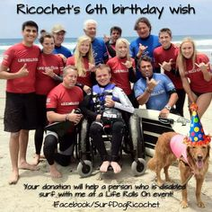 Ricochet is a therapy dog who helps disabled people surf and have a great time! Oh, and Ricochet surfs as well!
