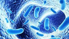 Anvisa alerta para risco de superbactérias - EXAME.com