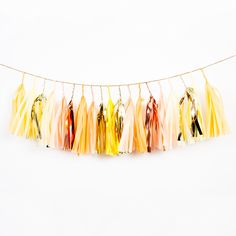 Bright and cheery.This garland is handmade from premium Satin Wraps tissue paper and shiny gold and copper mylar. The garland is about 6 feet long . Tassel Garland, Tassels, Paper Bunting, Paper Garlands, Garden Nursery, Animal Party, Craft Party, Tech Accessories, Diy Crafts