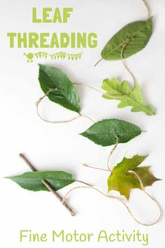 ALL NATURAL LEAF THREADING ACTIVITY for kids - engage with Nature, get creative and develop fine motor skills. This nature craft is fun a great way to get kids outside and develop their fine motor skills. A fun Summer craft for kids. Forest School Activities, Nature Activities, Outdoor Activities For Kids, Outdoor Learning, Learning Activities, Crafts For Kids, Kids Nature Crafts, Children Activities, Nature For Kids